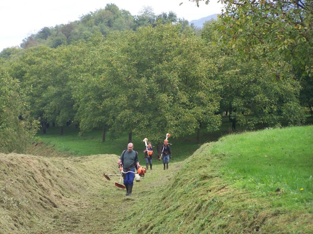 Passage du rotofil dans un fossé