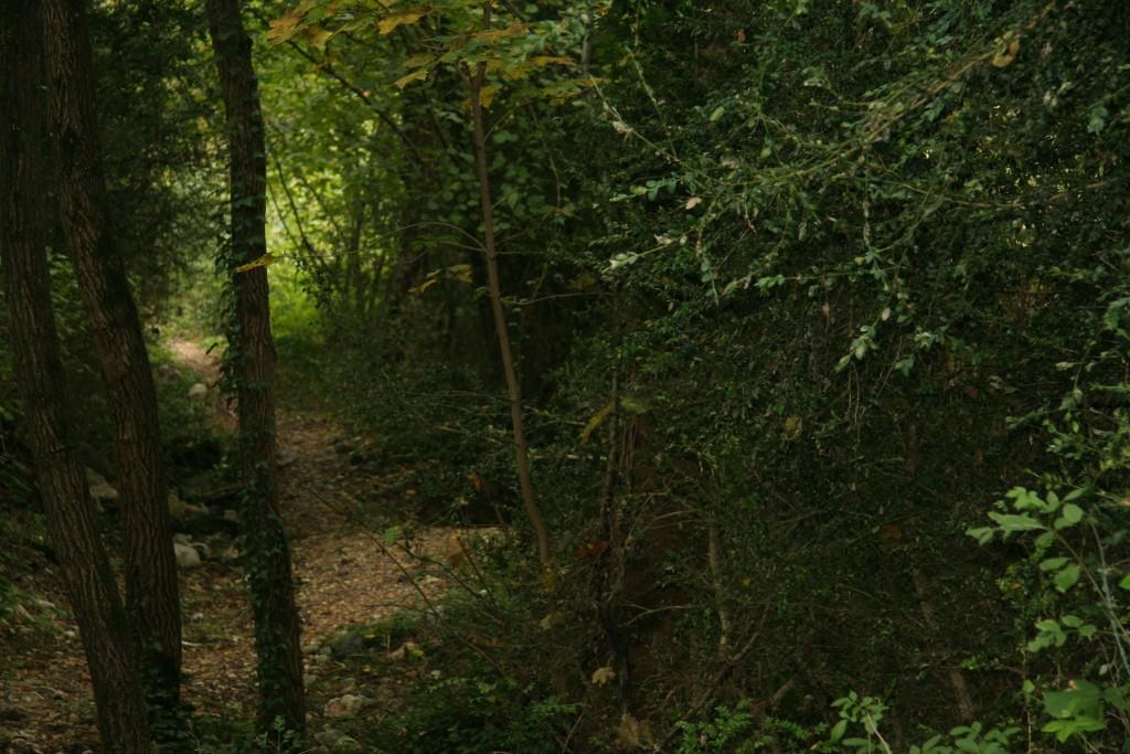 Le sentier de promenade qui longe la rivière La Vernaison