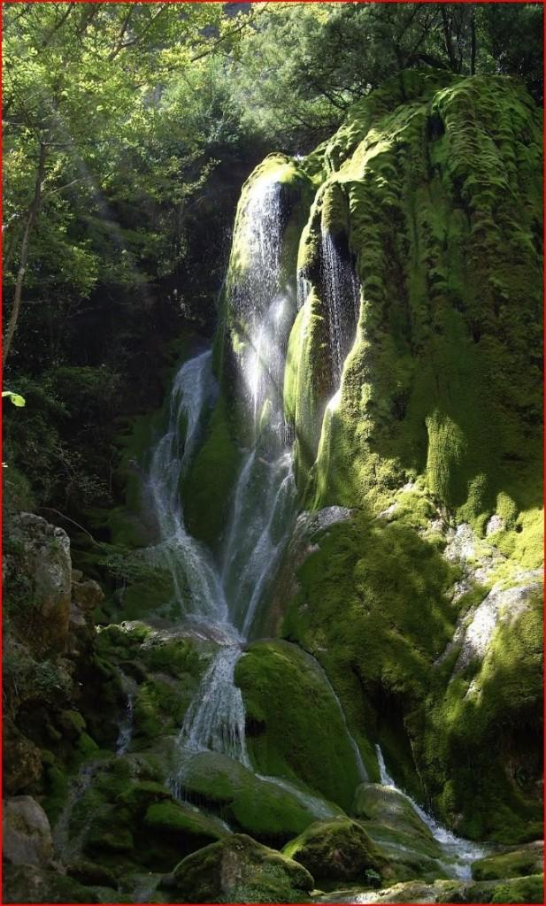 Échevis cascade verte