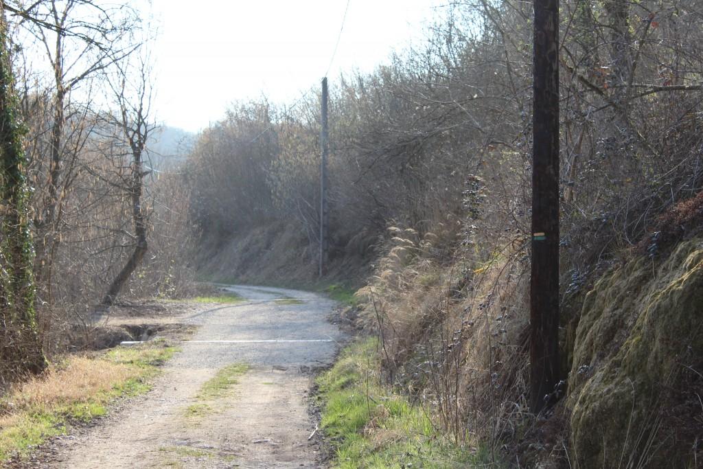 Sentier Martin Pêcheur rive Droite
