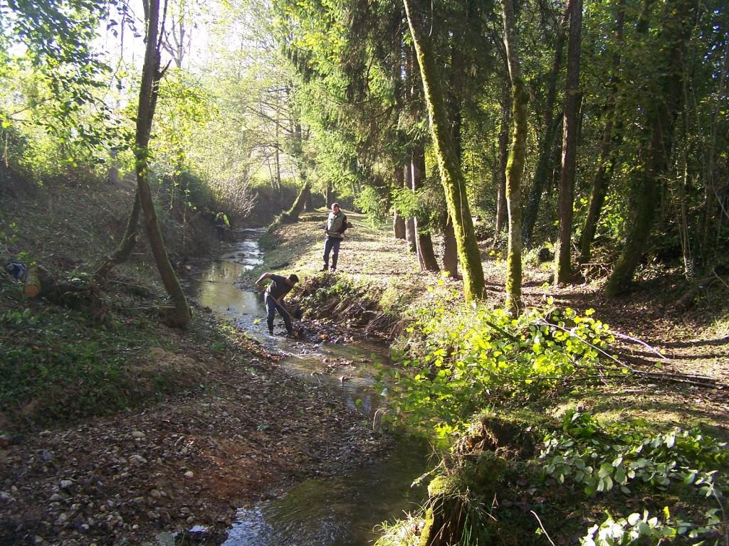Entretien des rivières et des cours d'eau