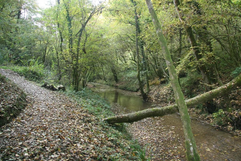 Ruisseau Le Tarze