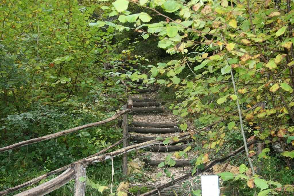 Chemin de Bournillon