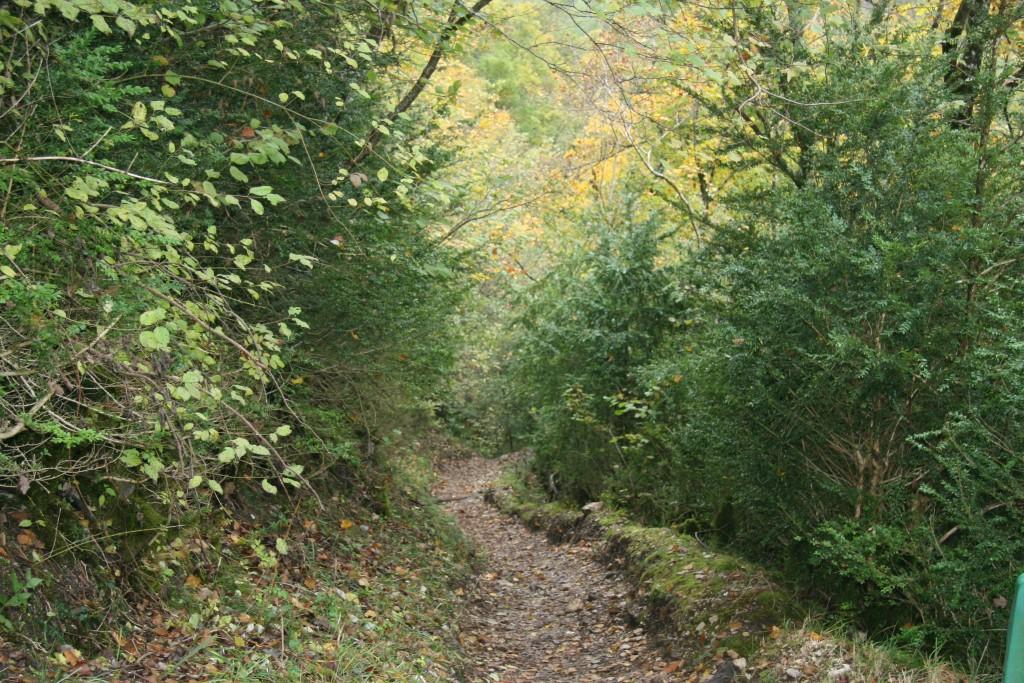 Sentier grotte Bornillon