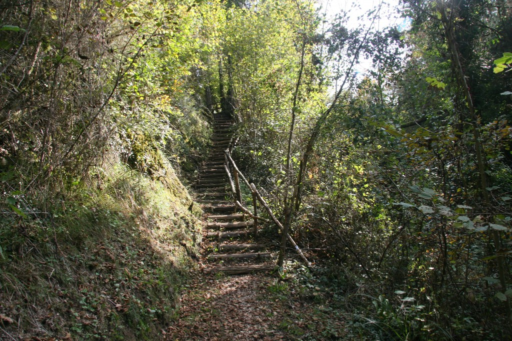 Escalier sentier Tarze