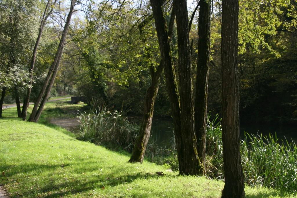 Petit étang du Bimat