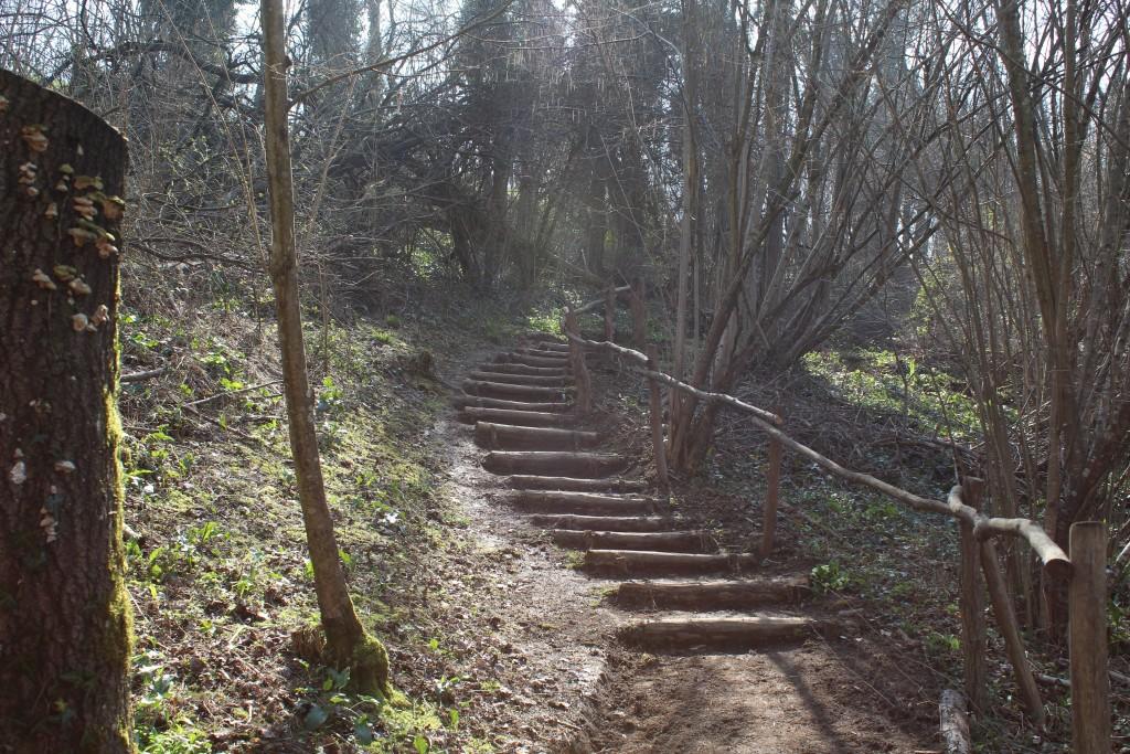 Marches de rondins et lisses de bois