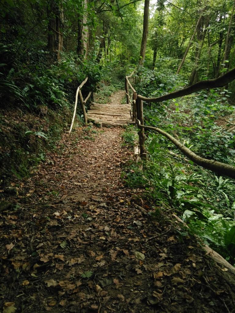 Passerelle en bois pour éviter les rigoles d'écoulement des eaux pluviales