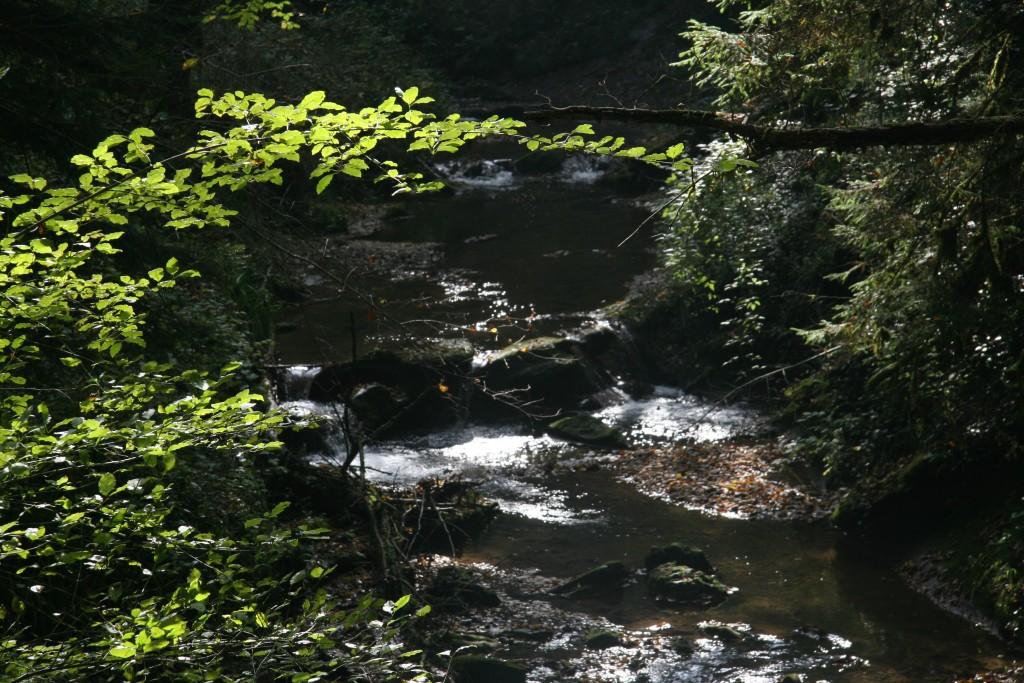 Entretiens des rivières