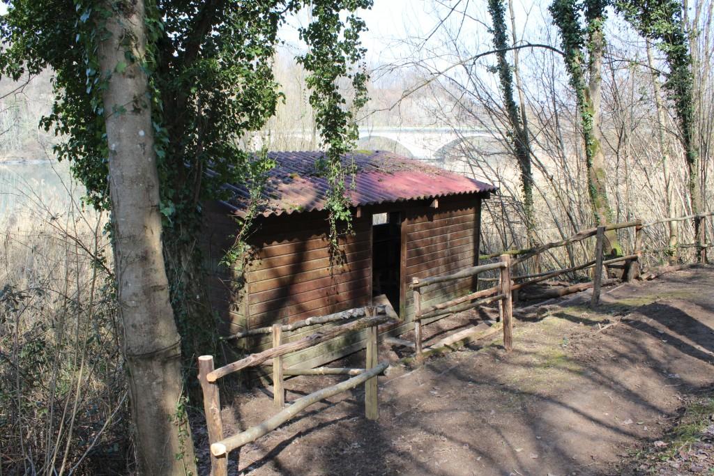 Cabane d'observation au Martin Pêcheur